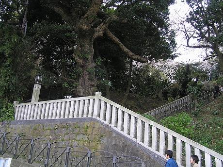 階段ばっかり…