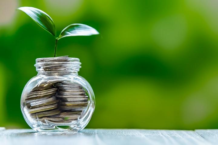 株の利益が収入に直結するかどうか